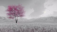 Fantasy sakura cherry tree in bloom 4K Stock Footage