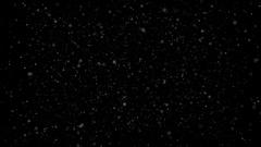 PNG alpha Plankton organisms. Stock Footage