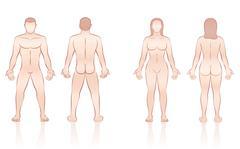 Human Body Man Woman Front Back Stock Illustration