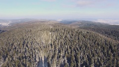 Aerial Flight over Winter Forest in low mountain range Stock Footage