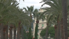 Palm trees and town building. Vacation at tropical resort. Stock Footage
