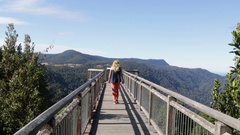 Female walking on sky walk at Dorrigo NP Stock Footage