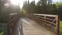 Sunlight shines on a wood bridge in a forest Stock Footage