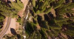 Overhead straight down aerial of a forest stream with evergreens. Stock Footage