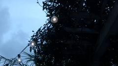 Garden Lights Stock Footage