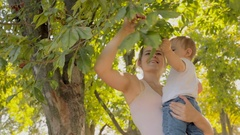 Young mother hugging her baby son under tree at hot sunny day Stock Footage