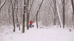 Funny dad carries two children in a sled on a winter alley. Stock Footage
