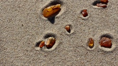 Natural amber stone at Baltic Sea beach Stock Footage
