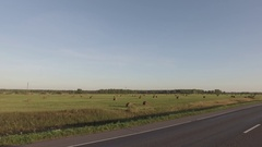 Car rides on the road surrounded by field - haystacks lie on the ground - view Stock Footage