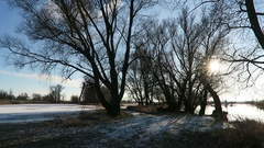 Winter at Havel river landscape. willow trees Stock Footage