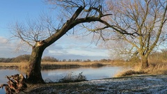 Havel river landscape in winter time. little bit of sun and ice floe around.. Stock Footage
