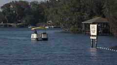 People visit to swim with manatees, Florida, USA Stock Footage