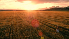 Aerial, edited - Pretty girl in a white dress walking in the yellow wheat field Stock Footage