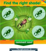 Find right shadow beetle Stock Illustration