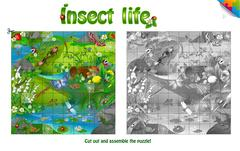 Life of insects on forest clearing. Stock Illustration