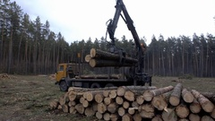 The mechanical arm of a specialized Bark Removing Machine strips the bark from a Stock Footage