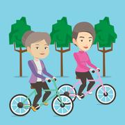 Senior women riding on bicycles in the park Stock Illustration