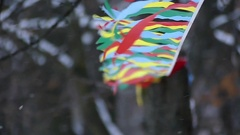 Sport Red, Blue, and Yellow, Flags in Forest in Slow Motion at Snowy Weather. Stock Footage