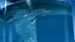 An Enigmatic Light Blue Whirlpool in a Bottle. Stock Footage