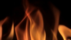 Flames fire on black background Stock Footage