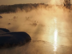 Unfrozen water the trees in the fog and frost Stock Footage