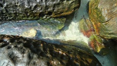Close up view of flowing clear water and wave around the stone of river bed Stock Footage