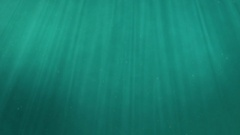 Underwater scene with copy space. Digitally generated nature background. Stock Footage