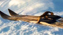 Old wooden skis on white snow. vintage handmade skis Stock Footage