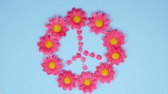 4K Stop Motion Animation Flowers Forming Peace Symbol Sign Stock Footage