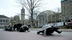 Tortoise and Hare sculpture on Copley Square, Boston, Massachusetts, USA. Stock Footage
