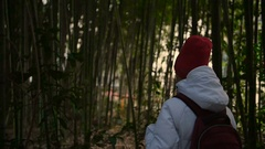 Girl walk thru bamboo thickets Stock Footage