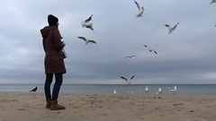 A Young Woman Feeding Seagulls and Smiling With a Grey Sea in the Background in Stock Footage