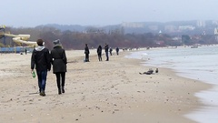 People Are Walking Along a Sandy Seabeach in Autumn With Flying Ravens in Slow Stock Footage