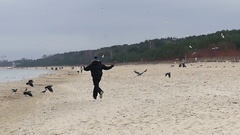 A Young Man Running and Waving His Hands on a Seabeach With Raven and Seagulls Stock Footage