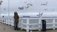 A Young Woman Throwing Food to Flying Seagull While Standing on a White Sea Stock Footage