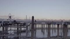 Low Tide At Docks 4k Stock Footage