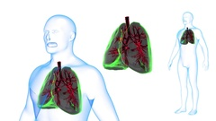 Human Body Lungs X-ray effects Loop Rotation. 3d render Full HD Stock Footage
