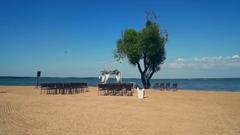 Beach with a lone tree. Wedding arch and chair. Blue sky and sea. Stock Footage