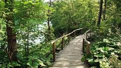 Lake in Plitvice National Park, Croatia Stock Footage