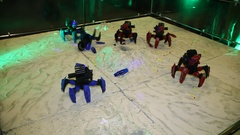 Toy robots on the radio control Stock Footage