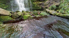 Waterfall with Moss Covered Rocks Stock Footage