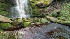 Waterfall Cascade Covered in Moss  Loop Stock Footage