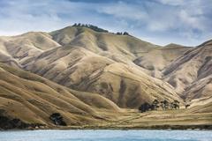 Arid mountains, Marlborough Sounds, South Island New Zealand Stock Photos