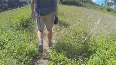 Hikers walking  the trail from a field to jungle Stock Footage