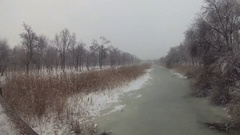 Winter landscape frozen river and trees. Snow-covered reeds, and cloudy sky. Stock Footage