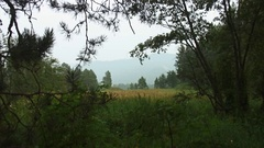 Southern Ural - view on the mountains - daytime Stock Footage