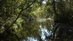 Southern Ural - mountain river - morning Stock Footage