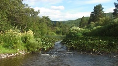 Southern Ural - mountain river - daytime Stock Footage
