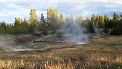 Smoking ground at west thumb geyser basin, in Yellowstone national park, in.. Stock Footage