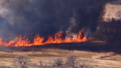 A fast-moving fire on dry grass field Stock Footage